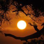 Blask słoneczny