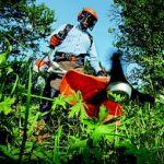 Kosić trawę