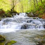 Spieniona rzeka